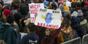 What Happens to DACA Holders If the Supreme Court Allows Trump to End the Program?